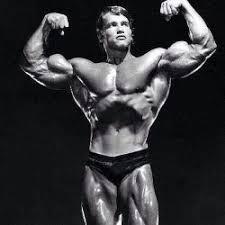 Arnold faisant un Vacuum